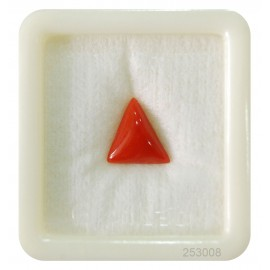 Natural Red Coral Triangular 4+ 2.4ct