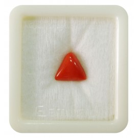 Certified Red Coral Premium 4+ 2.65ct