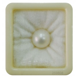 Natural Pearl South Sea 15+ 9.2ct