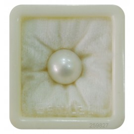 Pearl South Sea 18+ 11.2ct