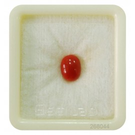 Italian Astrological Coral Stone Fine 1.5CT (2.5 Ratti)