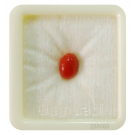 Astrological Coral Fine 2+ 1.55ct