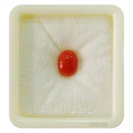 Italian Astrological Coral Stone Fine 1.6CT (2.67 Ratti)