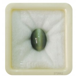 Astrological Cats Eye Premium 9+ 5.6ct