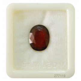 Hessonite Gemstone Fine 11+ 6.6ct