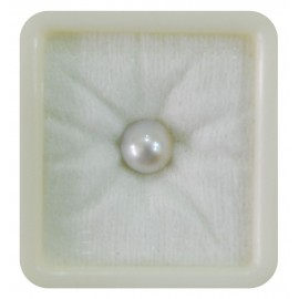 Pearl South Sea 5+ 3.05ct