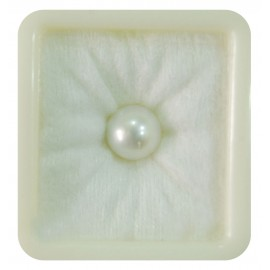 Pearl South Sea 4.6CT (7.67 Ratti)