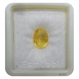 Yellow Sapphire Sup-Pre 8+ 4.85ct